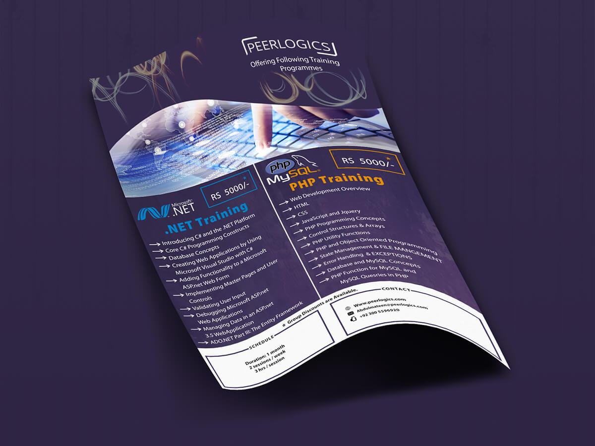 Brochure Design for Peerlogics